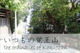 覚王山ハウス店主のブログ - いつもの覚王山